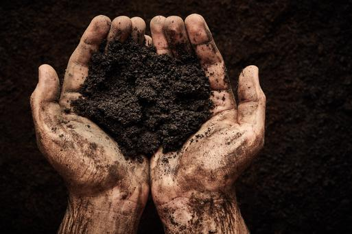 The future of peat-fired plants served by Bord na Móna has been called into question as the Government seeks to boost Ireland's green credentials. Photo: Nik Merkulov