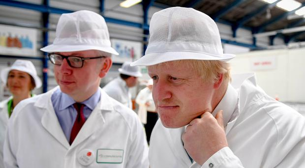 Michael Gove and Boris Johnson on the campaign trail. Photo: Andrew Parsons/Getty