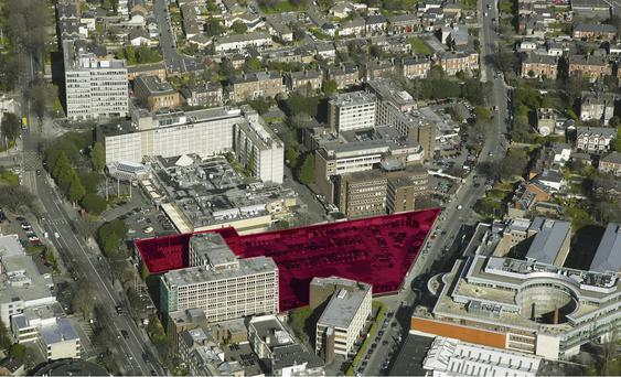 Over €200 million was paid for the 2.02-acre former Veterinary College site (highlighted) in Ballsbridge, Dublin 4