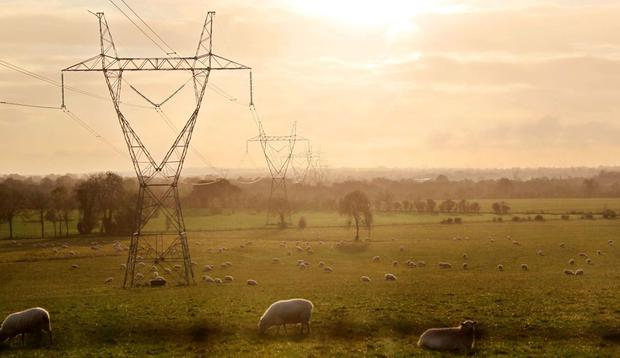 Pylons on farmland in Co Kildare. A report has found that their presence has little effect on property prices