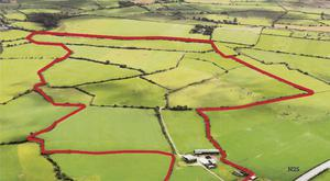 The land is divided into 11 fields by neat hedgerow