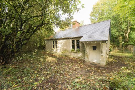 The single storey cottage in need of refurbishment is on a 1ac site and is guided at €100,000