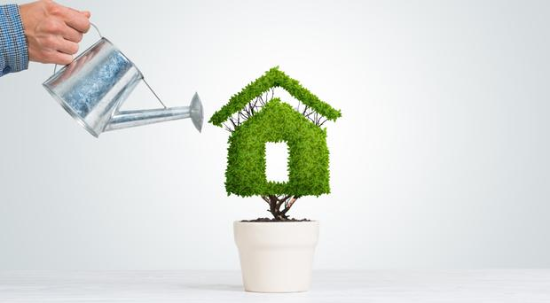 How do you solve a problem like Ireland's housing crisis? The topic understandably sets the political agenda. Media coverage of the issue is replete with evocative imagery of vultures, cuckoos and, most recently, hanging gardens, with a proposed development in Dublin 1 supposedly mirroring ancient Babylonian shrubbery.