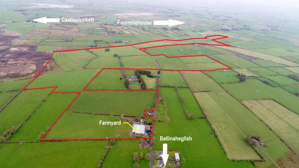 On the market: Most land in Connacht/Ulster is sold by private treaty. This 167ac farm at Ballinaheglish, about 15km west of Roscommon town, is currently sale agreed under private treaty