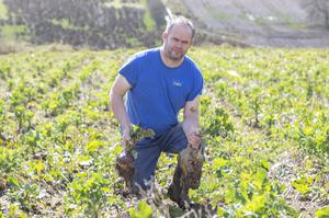 Inishowen farmer Gerard Diver who has offered free turnips to anyone who wants to gather them in at his field in Shrove, Greencastle.  (North West Newspix)
