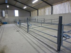 A new calf shed.