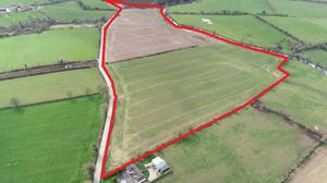 This 46.23ac non-residential parcel is located at Ballyoliver and Ballybrit, 2km south of Rathvilly village
