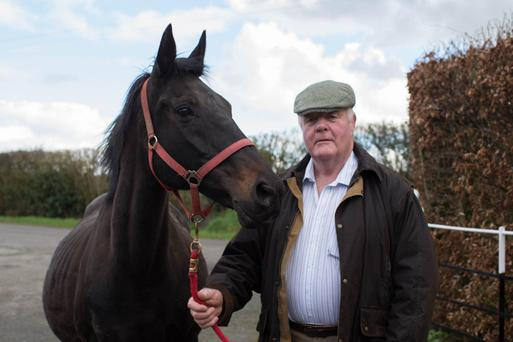 Paddy Behan with his mare Monte Solaro. Photo: Alf Harvey