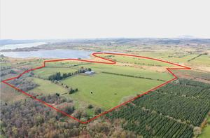 Lakeside: the 96ac farm rising from the shores of Lough Gara with some quality farm buildings is on the market with a guide price of €800,000.