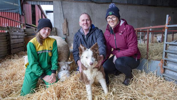 Sheep farmer Hugh O'Connell with his daughter Stepahanie, 22 and grandaughter Chloe, 12 and sheepdog Bonnie at his farm in Ballivor, Co Meath. Picture: Arthur Carron
