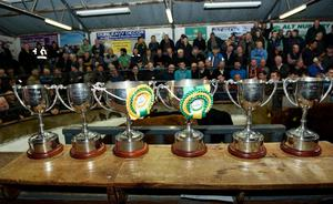 A selection of the trophies on offer in the pedigree classes at the Milford show and sale.