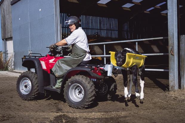 A consultation process is underway proposing amending the law so that ATV operators will by law have to undergo operator training and wear protective headgear.