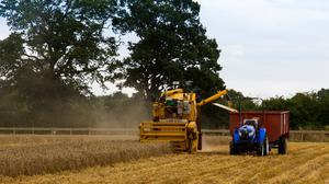Hands-free: The driverless Sampo combine and Iseki tractor in action