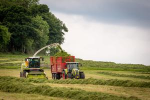 Richie White's Slievenamon Agricultural Services crew pictured cutting silage near Drangan, Co Tipperary. Photo: Dylan Vaughan.