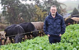 Mark Gillanders in his crop of kale at his farm at Kilmarly, Co. Monaghan.  Photo: Lorraine Teevan