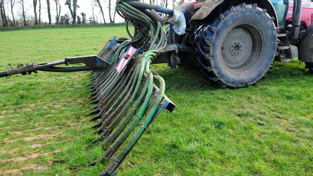 Slurry applied by injection, trailing shoe or band-spreader will be worth approximately three units more N per 1000 gallons than slurry applied with splashplate.  Photo: Robert Jones