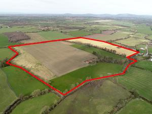 The 77ac parcel of tillage land located near Hacketstown