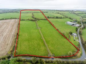 A non-residential farm of c60ac at Kilkennybeg, Killenaule, Co Tipperary is bound to attract attention when it comes to auction on March 10th. It is guided pre auction at €9,500 to €10,000 per acre.