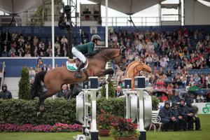 Darragh Kenny pictured here in action in 2014 Nations Cup in the RDS, is now based full time in the US