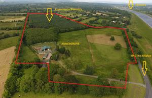 An aerial view of the property where the land consists of 33ac in forestry and 20ac grazing.