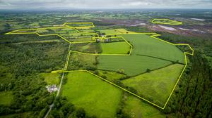 High ground: An aerial view of the 184ac for sale at Derrynaflan