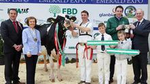 Amazing Grace: Philip Jones (at halter) with Will and Kate Jones after Hallow Attwood Grace was judged Supreme Champion at Emerald Expo 2018, and Ben Yates, judge, IHFA President Kathleen Watson, Adrian Grimes, FBD Insurance, sponsor of the Supreme Championship and Charles Gallagher, IHFA Chief Executive.