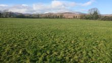 An 86ac Tipperary holding with the Galtee mountains to one side and the Comeraghs to the other, sold for €570,000 at auction