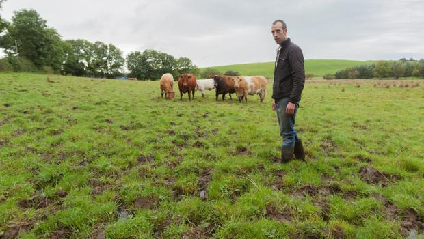 Adam Kerrigan on water-logged land at the family farm in Ballintra, Co Donegal last year. Photo: Philip Mulligan