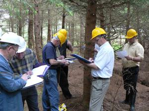 Calculations: Teagasc regularly runs timber measurement courses where you learn how to use the Thinning Ready Reckoner