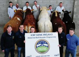 ICBF launched their Maternal Bull Breeders Programme at the show and sale at Cillin Hill in Kilkenny last year with breeders and breed society representatives, John Mc Enroe, James O Leary, Ollie Byrne, Trevor Masterson, John Fitzpatrick, Peador Glennon, Pat Donnellon, Paul Skyes, Nevan Mc Kiernan, and Chris Daly.