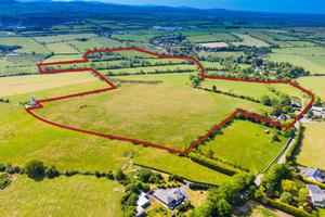 The 81ac residential farm is located on elevated ground at Athgoe, 2km from Newcastle and 23km from the city centre. The holding can be bought in lots or as an entire and is guided at €925,000.