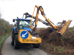 Cutting hedges last week for a farmer in Tramore, Co Waterford