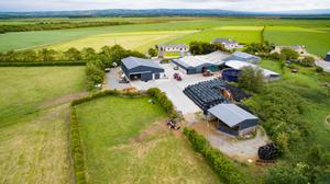 A view of the farming factilities at the 145ac residential dairy farm on the market at Lisselton in North Kerry.