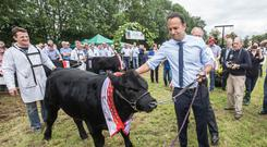 Farmers' friend: Leo Varadkar claimed to support farmers but the Budget needed a here-and-now response to the Brexit threat. Photo: Pat Moore