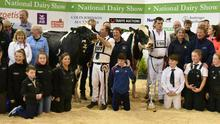 Members of the Limerick and Clare Friesian Breeders Club join the Hannon and McNamara families following the Supreme Championship at the National Dairy Show at Millstreet awarded to  Lisnalty Megasire Rituel (right) exhibited by Paul Hannan, Crecora, Co Limerick and Reserve Supreme Championship to Woodmarsh Cancun Lyme 2,  exhibited by Ml & E McNamara, Barna, Newtownshandrum, Charleville.