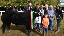 Victor Barnett, Raphoe, Co Donegal with his All Ireland Beef Bullock Champion,  Robbie Barnett with trophy, John Lynch, judge, Clyde Barnett,  John Beirne, Chairman, Strokestown Show Society,  Noel Sweeney, sponsor and Beatrica Stephenson.