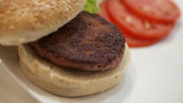 Non-meat burgers could be called discs (David Parry/PA)