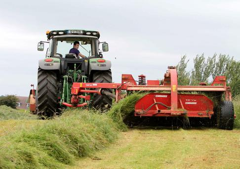 Alan Dolan from Kilrickle, Co Galway was making the best of the good weather to mow silage over the weekend