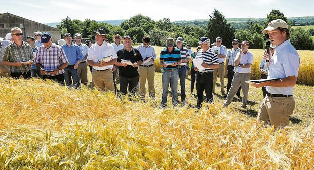 Cereal skills: Pictured at the Irish Seed Trade Association (ISTA) cereal trials open day on the Ballyderown Farm, Moorepark, Fermoy are speaker Seamus Kearney, Department of Agriculture, addressing members of the seed trade