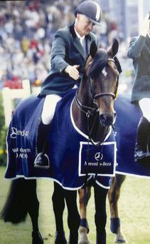 PEDIGREE: One of Ireland's top showjumpers, Coolcorron Cool Diamond, died recently at the Coolcorron Stud in Cor