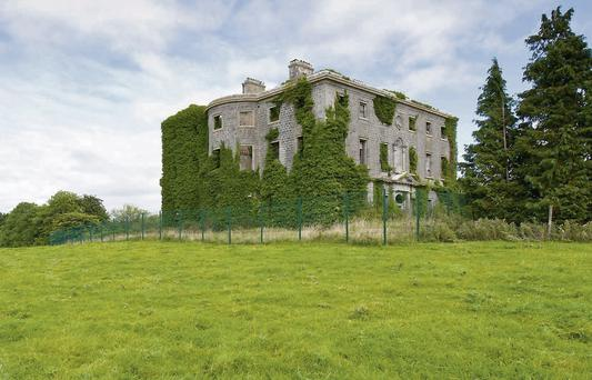 LABOUR OF LOVE: The elegance of Tudenham Park House, some 8km from Mullingar, is still visible even with a missing roof and ivy masking its exterior