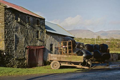 Silage bales were brought to this yard in Kilrossanty village, Co Waterford for feeding. Farmers have been urged to re-assess their fodder stocks in January to ensure they have enough feed until turnout in the spring. Photo: Jennifer O'Sullivan.