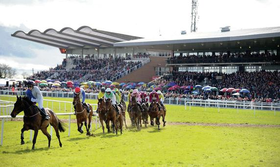 A view of the packed stands on Irish Grand National Day as the punters come out in their droves for the pinnacle event in Irish racing.