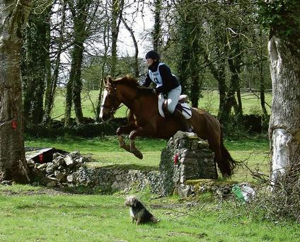 Mairead Moynihan enjoying a TREC competition at Clonshire Equestrian Centre in Adare
