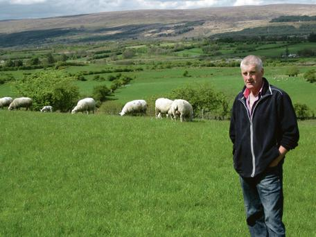 Sean Conway is on track with Teagasc targets for a mid-season lambing flock with ewes at 1.61 lambs per ewe put to