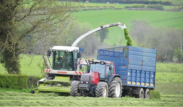 Formula: Soil or crop limitations won't always lead to poor silage but they will lead to inconsistent and unpredictable yields