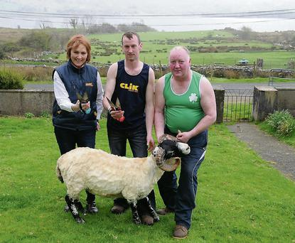 Against the backdrop of Lough Mask, Co Mayo, the two members of Ireland's Blade Shearing team, Seamus Joyce and Peter Heraty, get in some training for the Golden Shears World Blade Shearing Championships