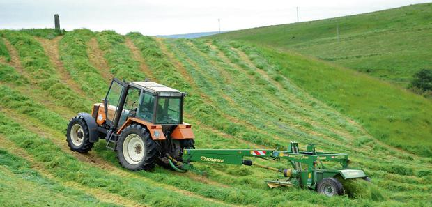 Silage bales were made in recent weeks