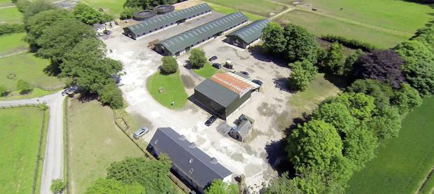 Potential: The Arodstown Stables in Moynalvy have enjoyed a wealth of success through the years and come on the market with a guide price of €2.5m