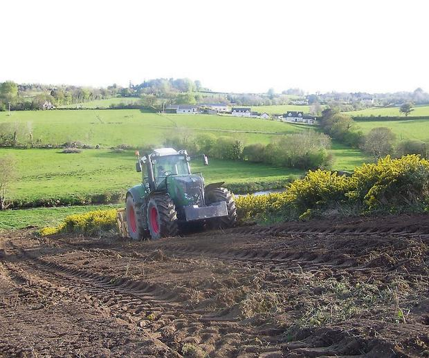 TRANSFORMATION: The FAE is equally at home in the field and will transform areas overgrown with furze and gorse into workable land in a single pass